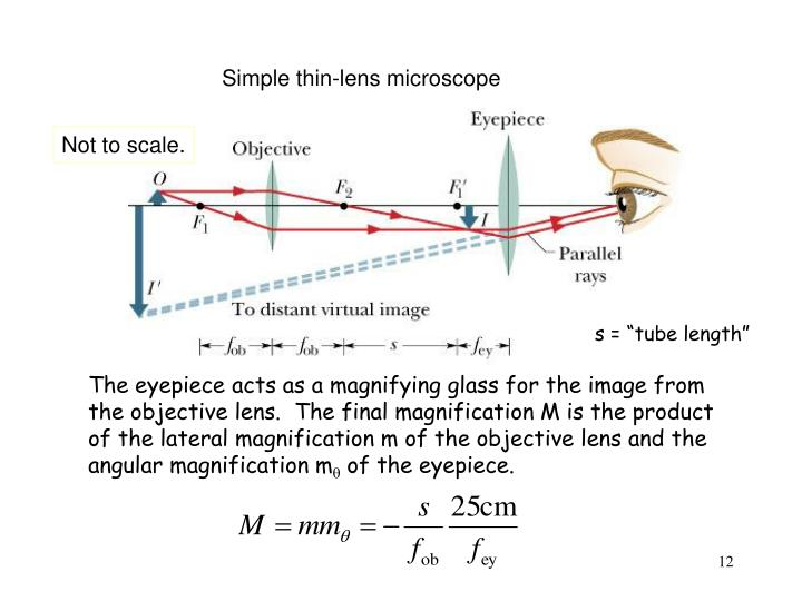 Simple thin-lens microscope