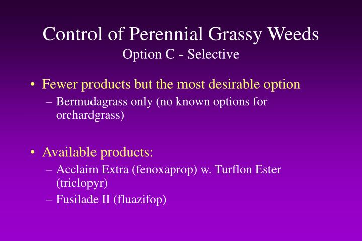 Control of Perennial Grassy Weeds