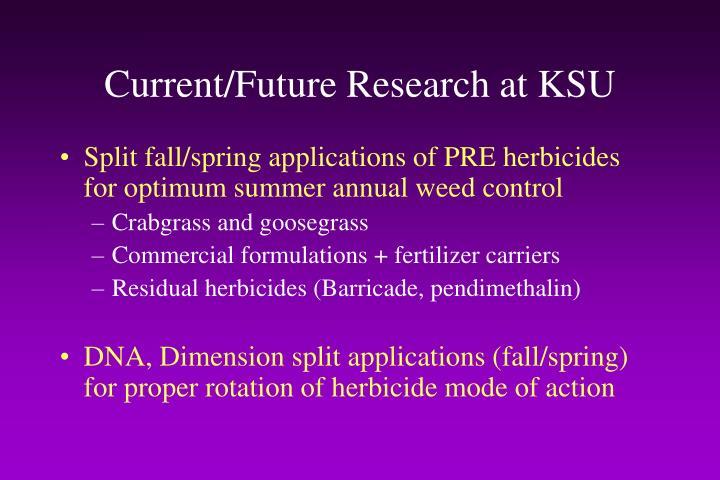 Current/Future Research at KSU