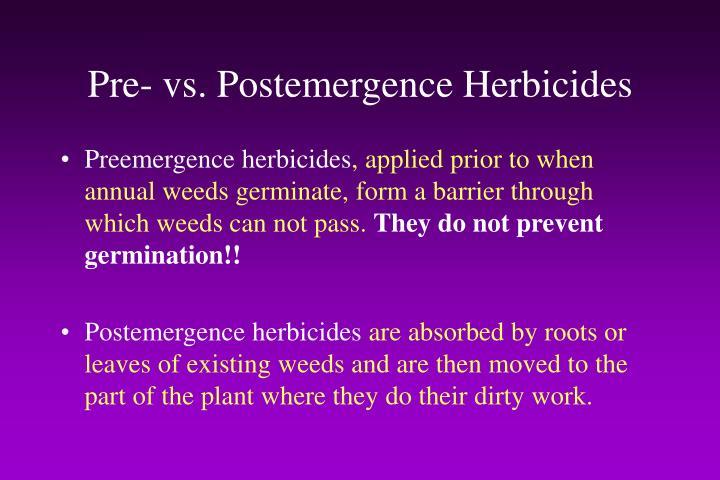 Pre- vs. Postemergence Herbicides