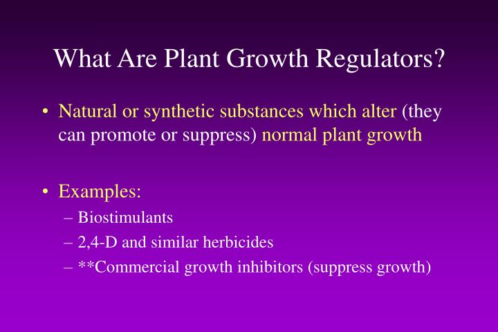 What Are Plant Growth Regulators?