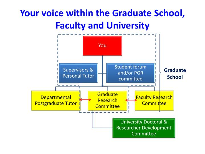 Your voice within the graduate school faculty and university