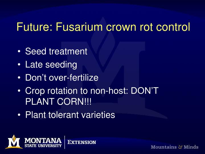 Future: Fusarium crown rot control