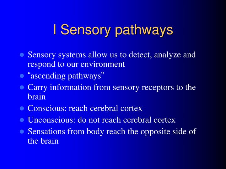 I Sensory pathways