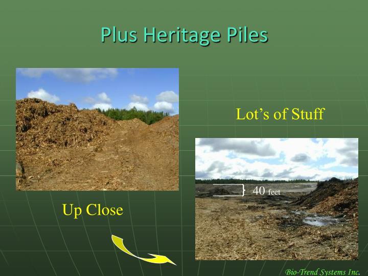 Plus Heritage Piles