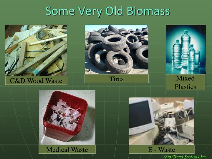 Some Very Old Biomass