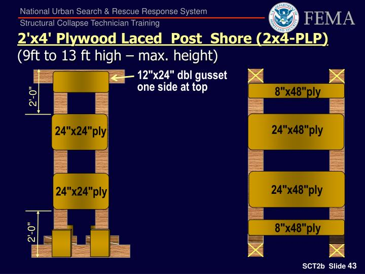 2'x4' Plywood Laced  Post  Shore (2x4-PLP)