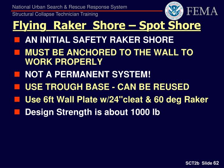 Flying  Raker  Shore – Spot Shore