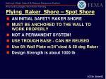 flying raker shore spot shore