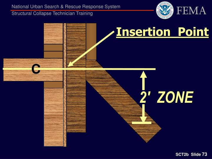 Insertion  Point