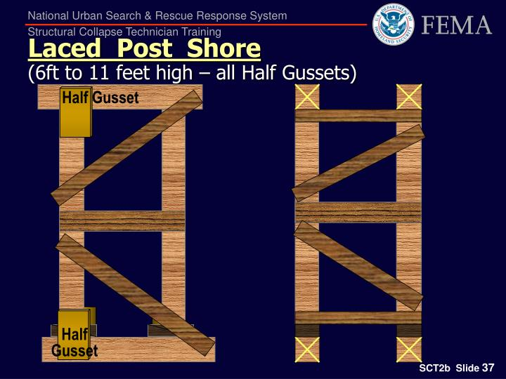 Half Gusset