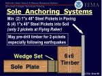 sole anchoring systems