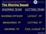 the shoring squad