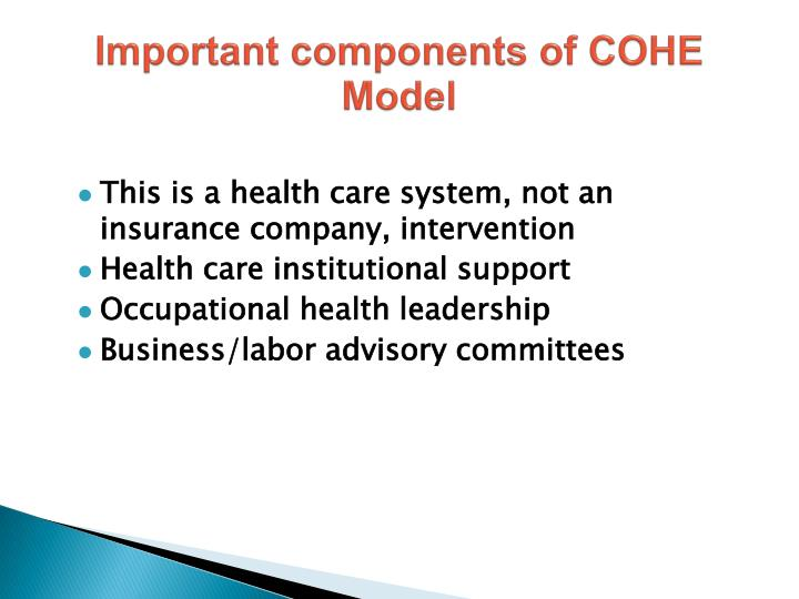 Important components of COHE Model