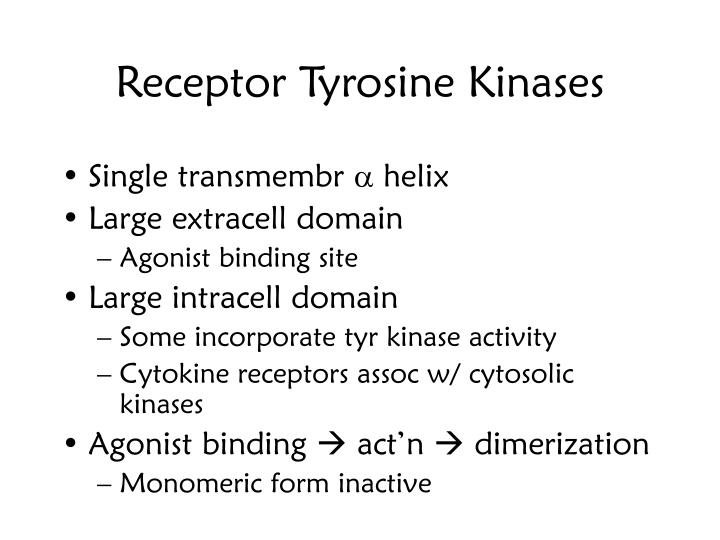 Receptor Tyrosine Kinases