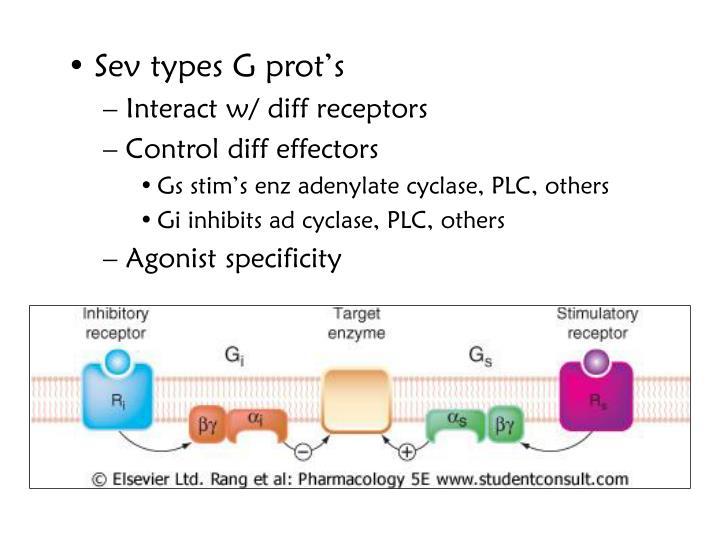 Sev types G prot's