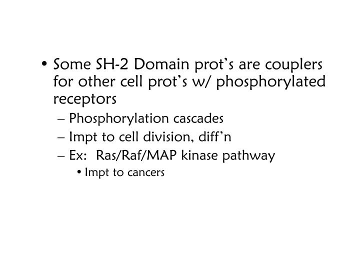 Some SH-2 Domain prot's are couplers for other cell prot's w/ phosphorylated receptors