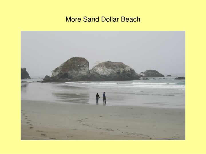 More Sand Dollar Beach