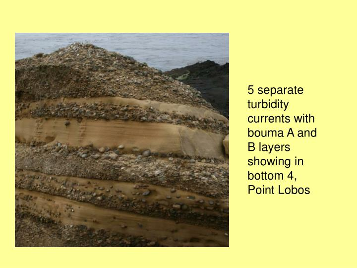 5 separate turbidity currents with bouma A and B layers showing in bottom 4, Point Lobos