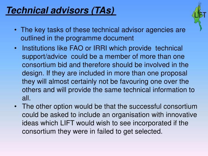 Technical advisors (TAs)