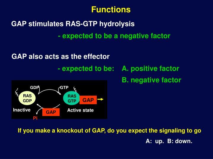 GAP stimulates RAS-GTP hydrolysis