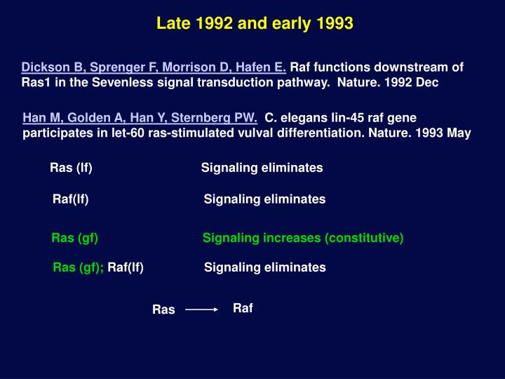 Ras (lf)       Signaling eliminates