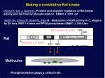 making a constitutive raf kinase