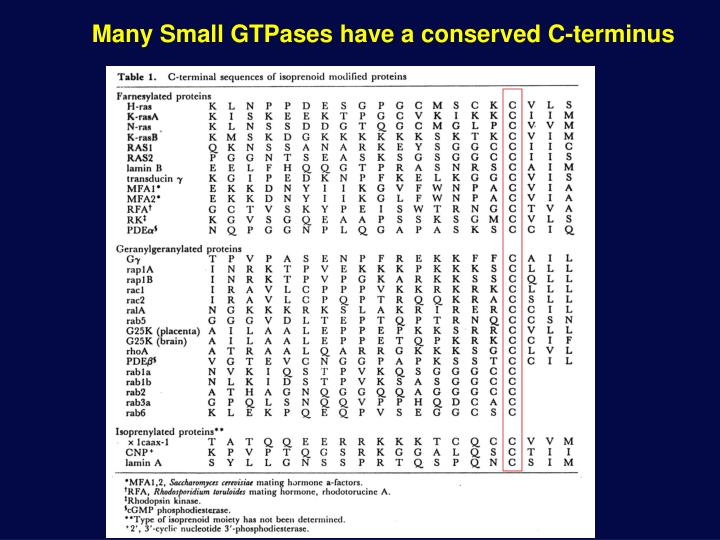 Many Small GTPases have a conserved C-terminus