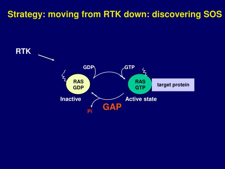 Strategy: moving from RTK down: discovering SOS