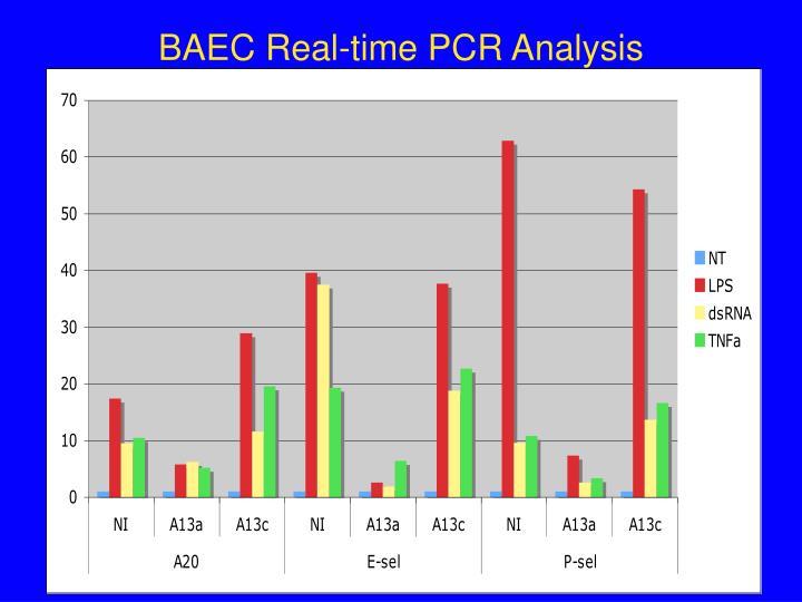 BAEC Real-time PCR Analysis