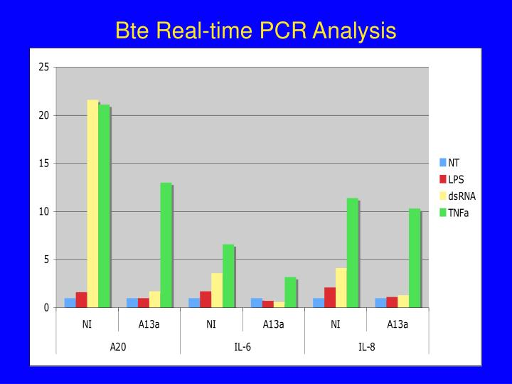 Bte Real-time PCR Analysis