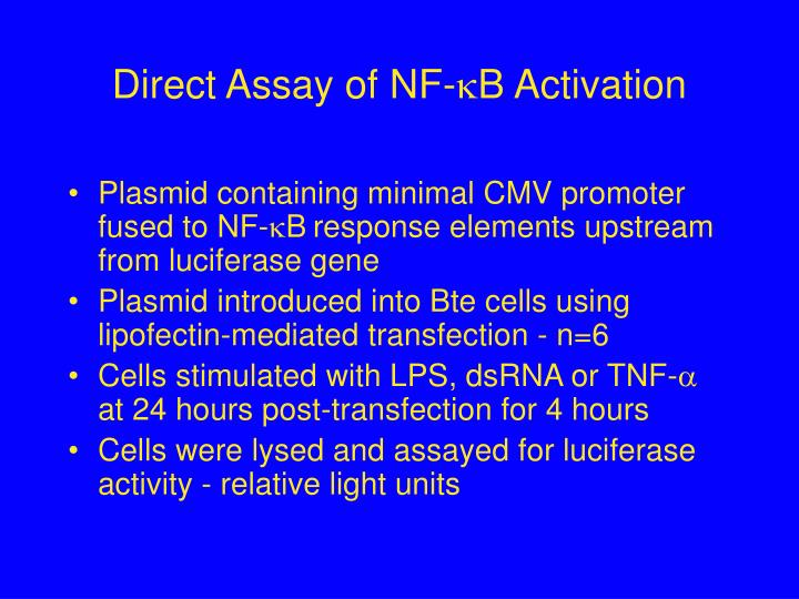 Direct Assay of NF-