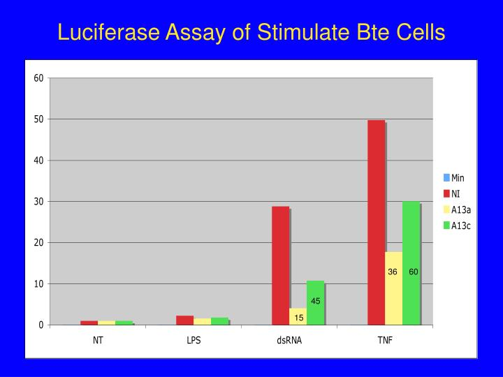 Luciferase Assay of Stimulate Bte Cells