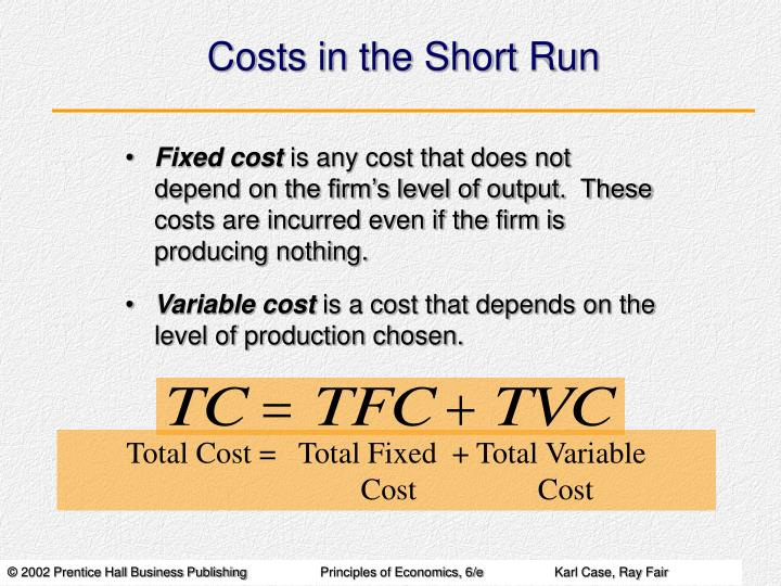 Costs in the short run1