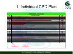 1 individual cpd plan1
