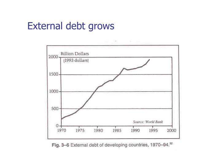 External debt grows