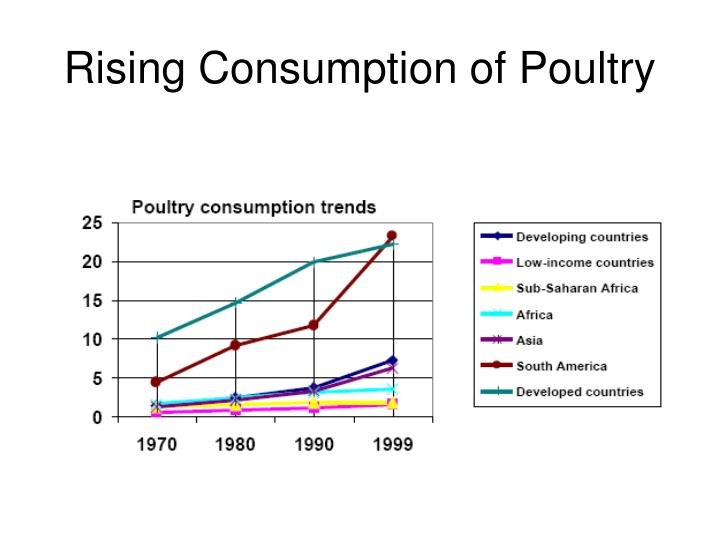 Rising Consumption of Poultry