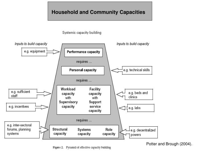 Household and Community Capacities