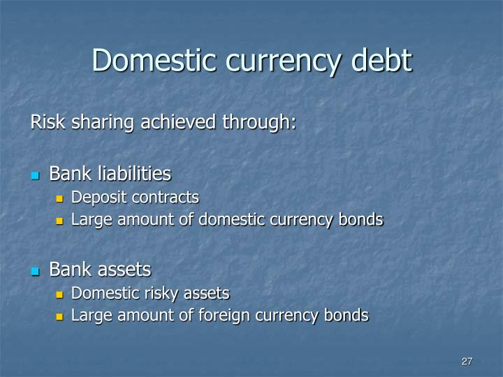 Domestic currency debt