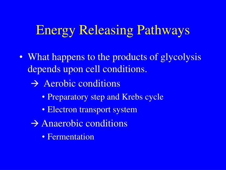 Energy Releasing Pathways