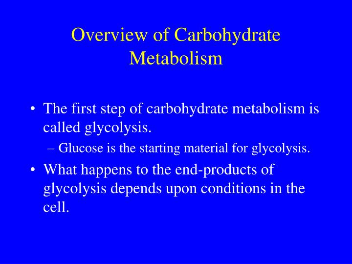 Overview of carbohydrate metabolism1