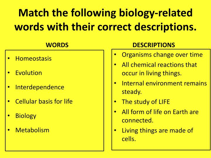 Match the following biology-related words with their correct descriptions.