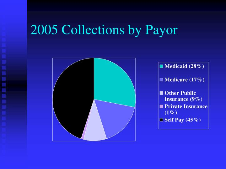 2005 Collections by Payor