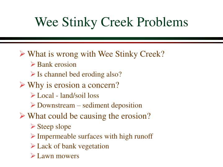 Wee Stinky Creek Problems