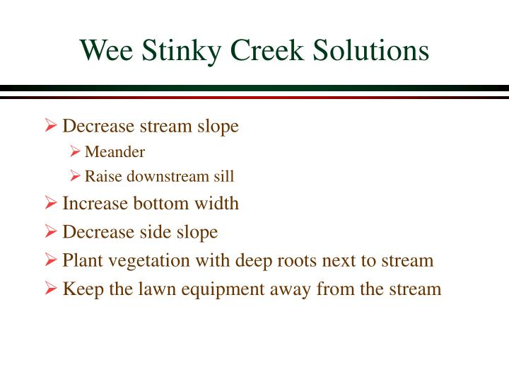 Wee Stinky Creek Solutions
