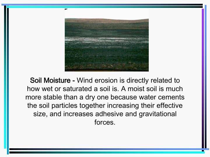 Soil Moisture -