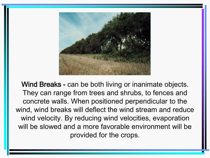 Wind Breaks -