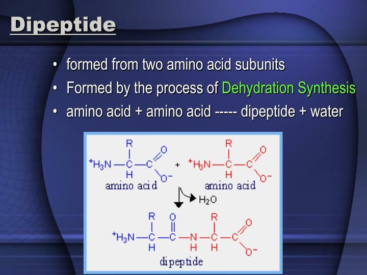 Dipeptide