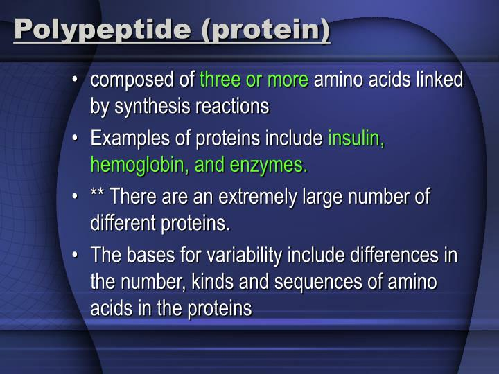 Polypeptide (protein)