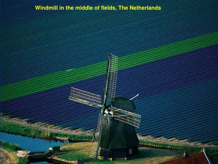 Windmill in the middle of fields, The Netherlands